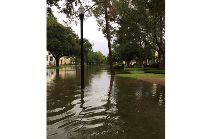 Harvey Flood